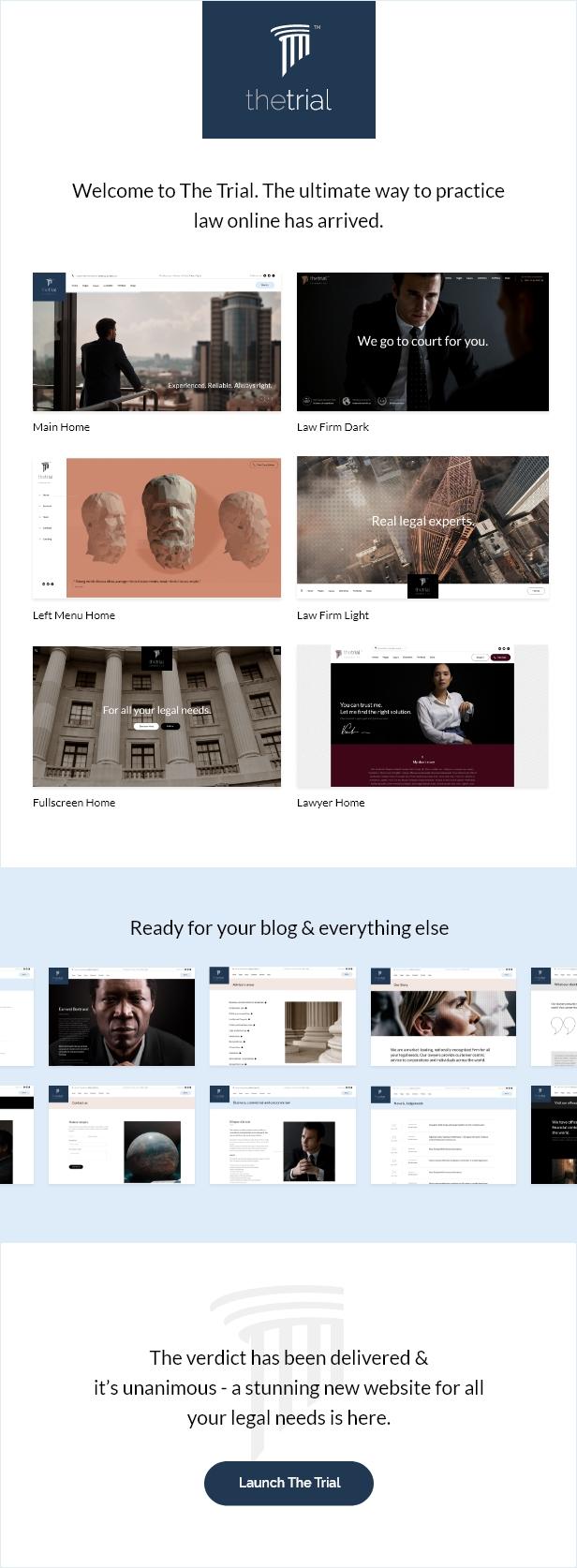 The Trial - Law WordPress Theme - 2